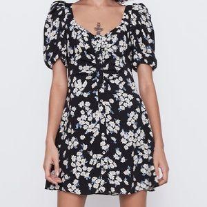 Zara daisy dress